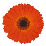 Orange Flower Wedding Decor