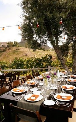 rustic wedding long tablescape vineyard