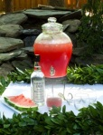 watermelon wedding punch
